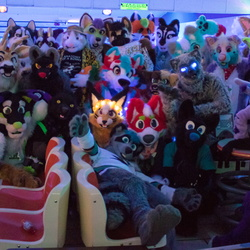 Cupertino Furbowl January 2018